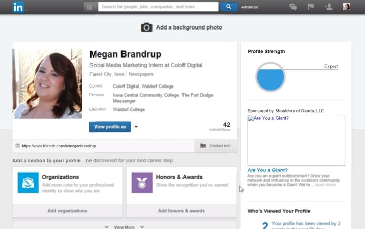 Megan Brandrup Social Media LinkedIn