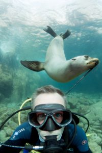 Selfie of scuba diver with marine life